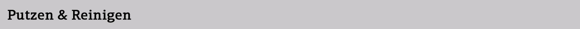 Putzen&Reinigen_Desktop