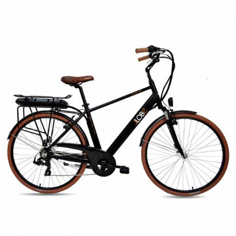 "Elektro City-Bike ""Metropolitan""-1"